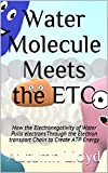 Water Molecule Meets the ETC: How the Electronegativity of Water Pulls electronsThrough...