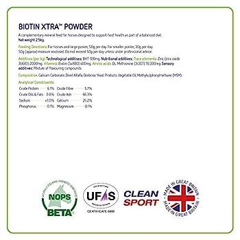 Equine America Biotin Xtra Powder Complément prêt à l'emploi pour cheval et poney 2,5 kg
