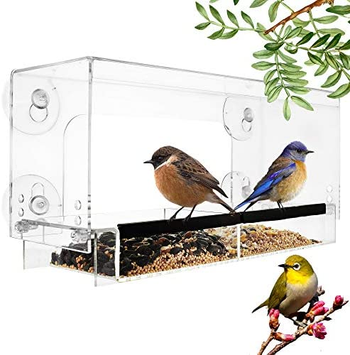 Adjustable Clear Window Bird Feeder 4 Strong Suction Cups Removable Seed Tray with Adjustable product image