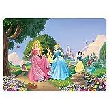 Juego de manteles individuales – Princesas Disney – Raipone, Cenicienta, Belle, Blanca Nieve, Ariel – 42 x 30 cm