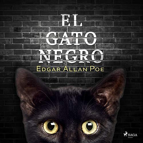 El gato negro Audiobook By Edgar Allan Poe cover art