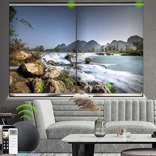 Yoolax Motorized Roller Shade with Pictures, Blackout Smart Window Blinds Works with Alexa...