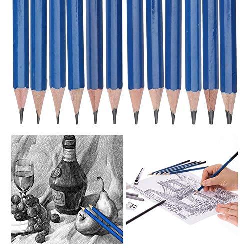 12本セット 美術鉛筆セット デッサンツール 木炭鉛筆 美術の学生・教師に適用 素描 美術 塗り絵 学生 入校祝い 入園祝い プレゼント 無毒無害 使用安心