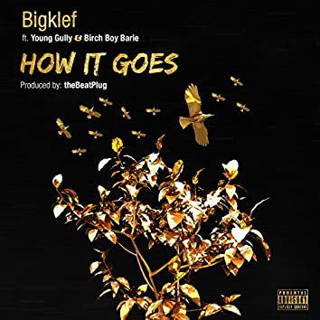 How It Goes (feat. Young Gully & Birch Boy Barie)