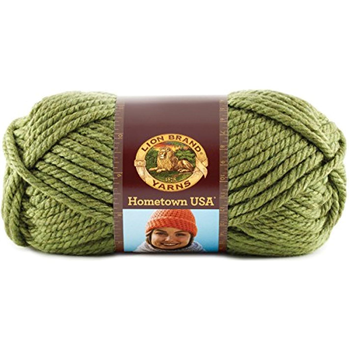Lion Brand Yarn LBY-434 Hometown USA Yarn (172) Oklahoma City Green, Sonoma