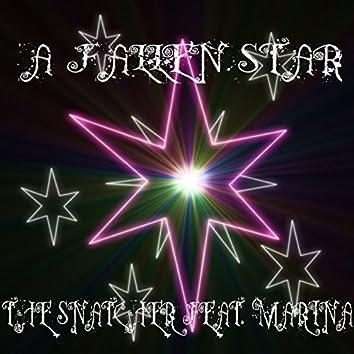 A Fallen Star (feat. Marina)
