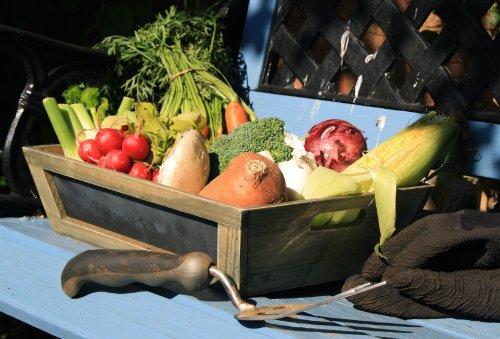 Homes on Trend Caja de Almacenamiento de Madera de Brown con Pizarra Pug de Madera de tamaño Mediano Caja de contenedor de Vegetales Casa de Campo Estilo Vintage Chic Rustic Planter Pot