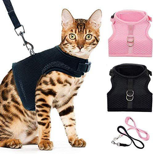 BINGPET Escape Proof Cat Harness Set mit Leinen - Schwarz & Pink Soft Mesh verstellbar - Am besten zum Gehen cool
