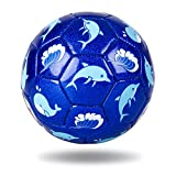 EVERICH TOY Toddler Soccer Balls,Kids Ball Game,Outdoor/Indoor Ball for Boys and Girls,(Size 2,with Pump)