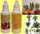 GreenLoop Indoor Plant Food