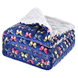 JOJO STYLE Plush Blanket for Bed Blanket Dual Sided Throw- 150120Cm Lightweight Cozy Thickened Lambs Wool Fleece Blanket Suitable for Sofa, Bed, Travel, Etc(Blue, Butterfly Print)