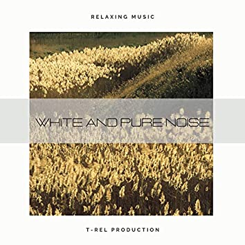 White And Pure Noise