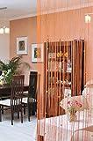 DecoKing 150x245 cm orange Spaghetti Vorhang Kristallen Kräuselband Wäschenetz Fensterdekoration Gardine Spaghetti