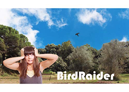 Bird-Tech TM Espantapájaros Cometa Halcón Kit Completo con Mástil 6 MTS Profesional
