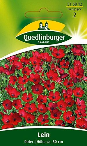 Roter Lein, Linum grandiflorum, ca. 60 Samen
