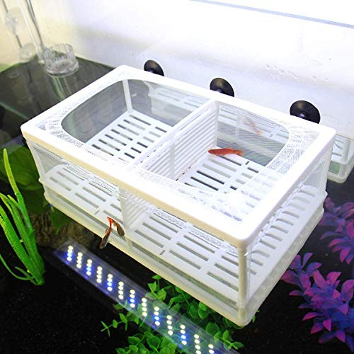 SENZEAL Aquarium Netz Ablaichbehälter Fisch Isolation Zuchttank Brutkasten Inkubator Mesh Fisch Tank Isolation Box für Aquarium Baby Fisch mit 3er Pipette