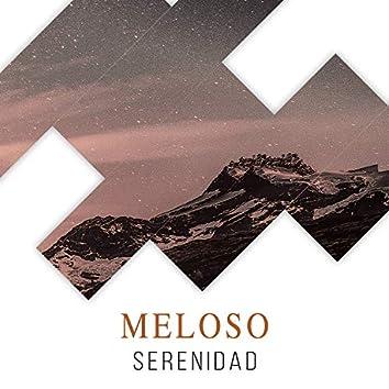 # 1 Album: Meloso Serenidad