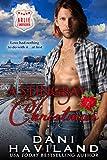 A Stingray Christmas (Arlie Undercover Book 1)