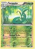 Pokemon - Serperior (7/124) - XY Fates Collide - Reverse Holo
