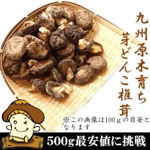 国産原木芽どんこしいたけ(椎茸) 500g