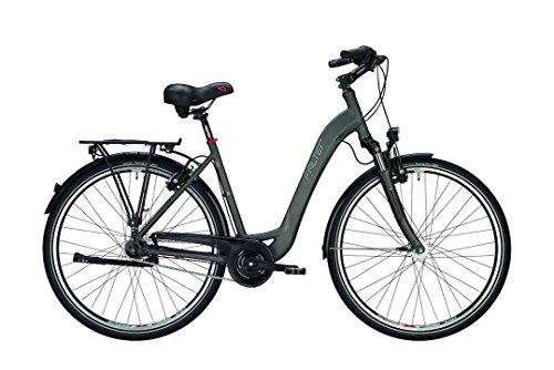 Falter City/Urbanbike C 4.0 Plus Wave XL(60) 28 Zoll Matt Titanium