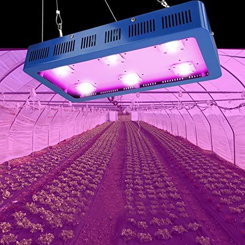 1200W/1500W/1800W Lampe Horticole Floraison Croissance LED COB Spectre Complet Dimmable Eclairage Semis Serre pour Plantes, Germination, Floraison (1800W)