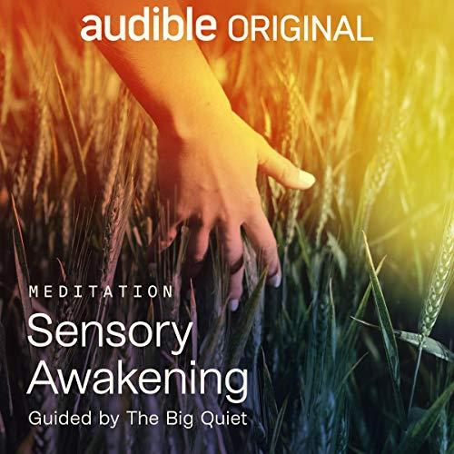 Sensory Awakening Audiobook By The Big Quiet cover art