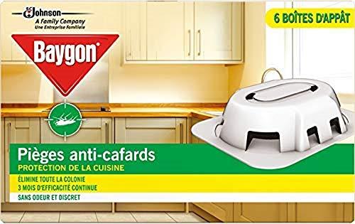 Baygon Pièges Anti-Cafard Boîtes dAppât Efficacité 3 Mois Pack de 6