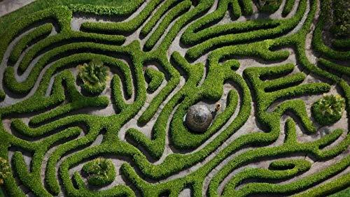1000 Puzzle Erwachsene Kinder Verdrehtes Labyrinth 75x50cm Educational Toy 3d Die DIY Tier Die Landschaft Tier Moderne Wohnkultur Freizeit Unterhaltung