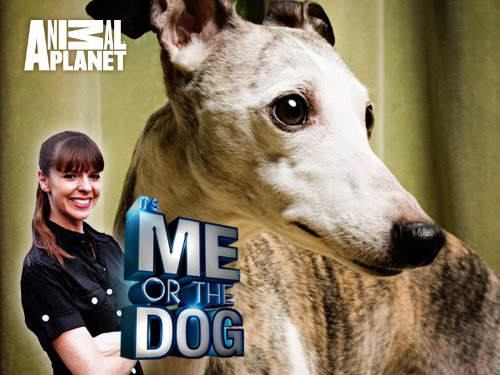 It's Me or the Dog Season 1