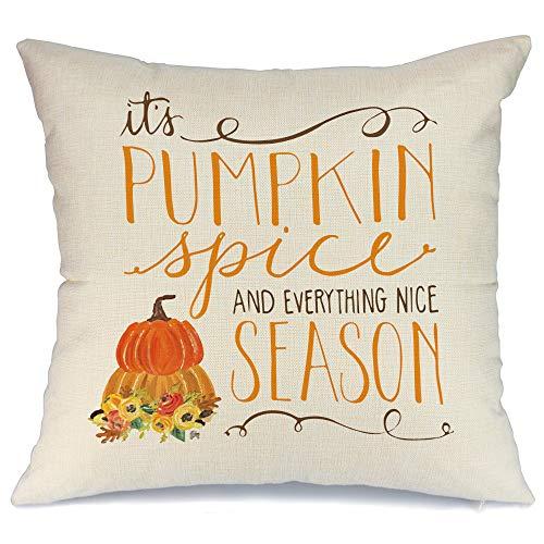AENEY - Funda de almohada de 18 x 18 cm para decoración de otoño, decoración de otoño, funda de cojín decorativa para sofá, sofá, decoración de otoño, 2030bz18