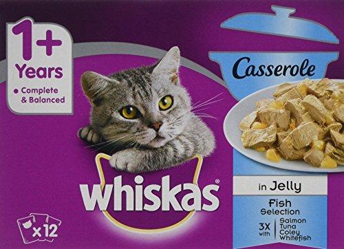 Whiskas 1Sacchetti + Cat casseruola Pesce Selezione in Gelatina