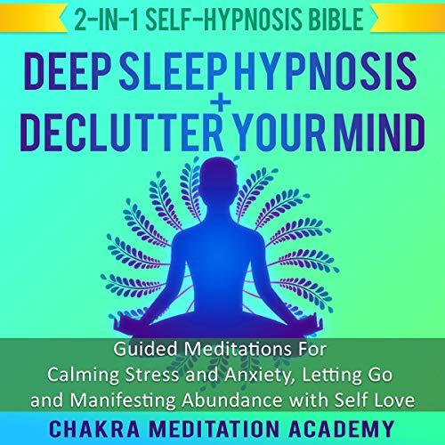 Deep Sleep Hypnosis + Declutter Your Mind audiobook cover art