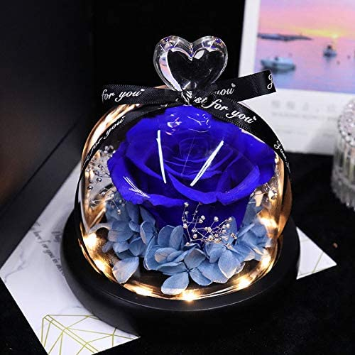 Preserved Rose Flower in Limited time cheap sale Glass Selling Dome H The Beauty Beast and