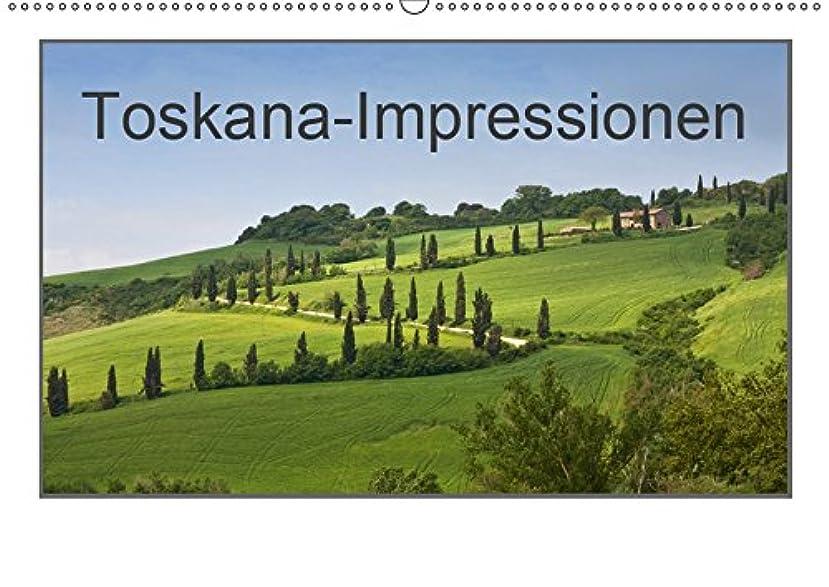 タイト広げる混乱させるToskana-Impressionen (Wandkalender 2019 DIN A2 quer): Flache Ebenen und sanfte Huegel praegen das Bild der Toskana. (Monatskalender, 14 Seiten )