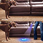 Lepro LE UV Torch, 9 LED 395nm Ultraviolet Flashlight, Blacklight Detector for Pet Urine, Stain, Bed Bugs and More, 3 AAA Batteries Included 16
