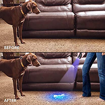 Lepro LE UV Torch, 9 LED 395nm Ultraviolet Flashlight, Blacklight Detector for Pet Urine, Stain, Bed Bugs and More, 3 AAA Batteries Included 7
