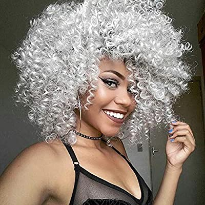 ELIM Curly Wigs for Black Women Silver Grey Short Kinky Soft Hair Wig Heat Resistant Natural Looking Wigs with Comfortable Wig Cap Z125A