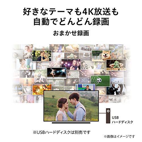 『東芝 43V型 液晶テレビ レグザ 43M530X 4Kチューナー内蔵 外付けHDD W録画対応』の5枚目の画像