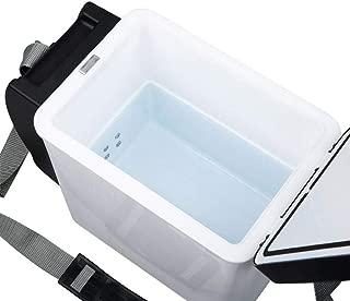 MINGRONG Eletric Car Refrigerator Nevera Car Mini Dual-Use Cool Warmer Refrigeradores Congelador Refrigerador y Calentador el/éctrico port/átil