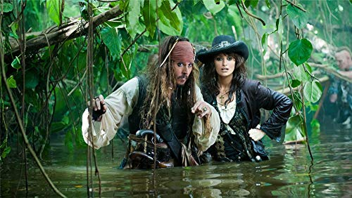 JJHHGG 3D DIY Digital Painting,Paint By Number,Adult Children'S Painting Canvas Painting,Pirates Of The Caribbean,Family Wall Decoration Frameless(40x50cm)
