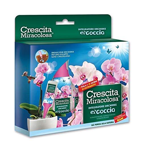 Crescita Miracolosa Orchidee, Verde, 18.0x3.0x19.5 cm