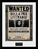 Harry Potter 1art1 Gesucht, Bellatrix Lestrange Gerahmtes