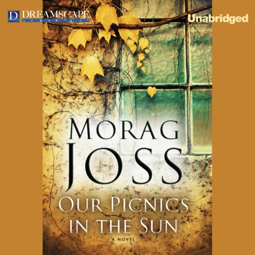 Our Picnics in the Sun audiobook cover art