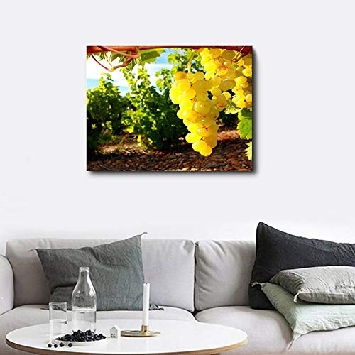 SADHAF Canvas Print schilderij wijngaard Retro Poster Print Wall Art Image Home Decor muurschildering behang A1 30x40cm