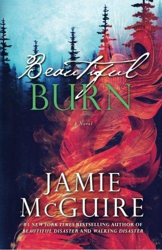Beautiful Burn: A Novel: 4 (The Maddox Brothers)
