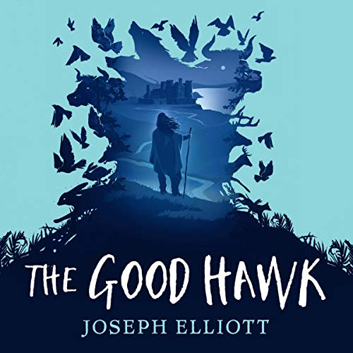 The Good Hawk cover art