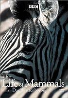 Life of Mammals 1 [DVD]