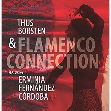 Flamenco Connection