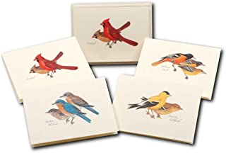 Earth Sky + Water - Peterson's Bird Assortment I Notecard Se t- 8 Blank Cards with Envelopes (2 Each of 4 Styles)